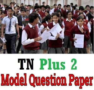 TN Plus II Previous Paper 2019
